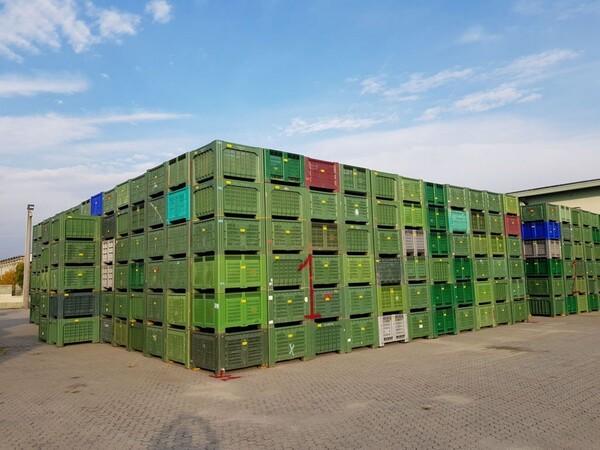 101#5715 Bins per frutta e verdura in vendita - foto 1