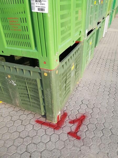 101#5715 Bins per frutta e verdura in vendita - foto 2