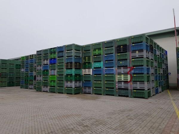 103#5715 Bins per frutta e verdura in vendita - foto 1