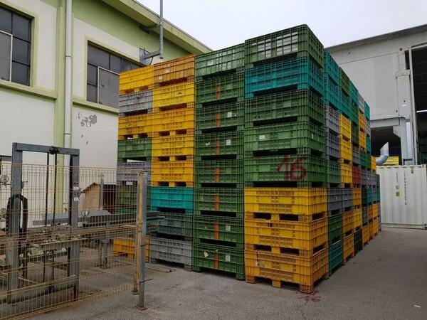 116#5715 Bins per frutta e verdura in vendita - foto 1