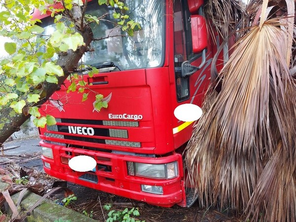 1#5716 Autocarro Fiat Iveco e transpallet meccanico Jungheinrich in vendita - foto 14