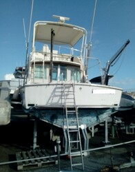 Bertram USA boat - Lot 0 (Auction 5736)