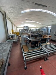 Skilled palletizer and  Cama CL 155 cartoning machine - Auction 5751