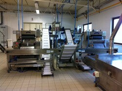 Automatic sheeters and machinery for the production of pasta - Auction 5789