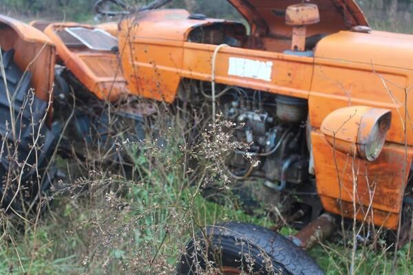 35#5817 Trattori agricoli Fiat e Nibbi in vendita - foto 6