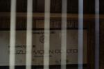 Immagine 21 - Chitarre acustiche - Lotto 1 (Asta 5826)