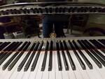Immagine 4 - Pianoforte mezzacoda Young Chan - Lotto 21 (Asta 5826)