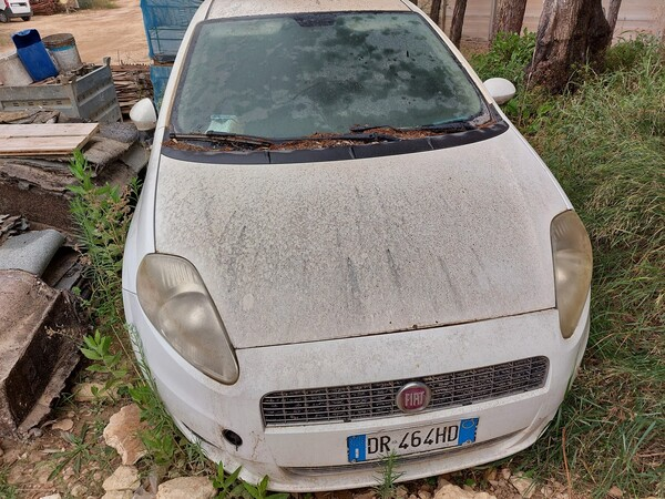 29#5859 Automobile Fiat Punto in vendita - foto 8