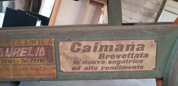 10#5901 Seghetto Kasto e segatrice a nastro Caimana in vendita - foto 7