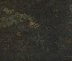 Dipinto Fogliame - Lotto 40 (Asta 5936)