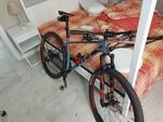 Immagine 3 - Bicicletta mountain bike Scott - Lotto 5 (Asta 5963)