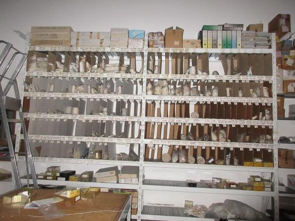 6#5979 Tessuti e accessori in vendita - foto 39