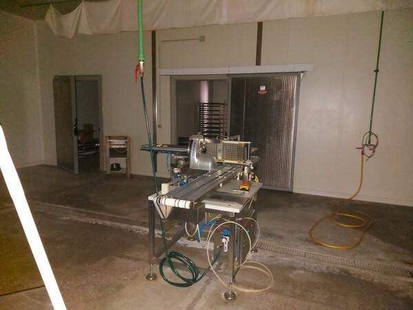 1#5982 Cessione di azienda dedita alla lavorazione e al confezionamento di prodotti ittici in vendita - foto 35