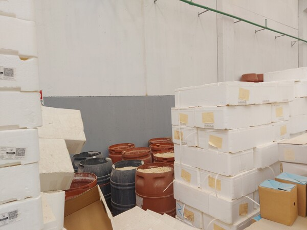 1#5982 Cessione di azienda dedita alla lavorazione e al confezionamento di prodotti ittici in vendita - foto 61