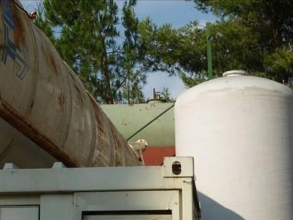 25#6053 Container uso ufficio e Idropulitrice a caldo Karcher in vendita - foto 12