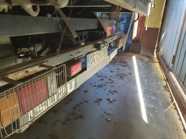 4#6054 Autocarro Isuzu in vendita - foto 10