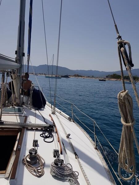 1#6071 Barca a vela Barberis in vendita - foto 7