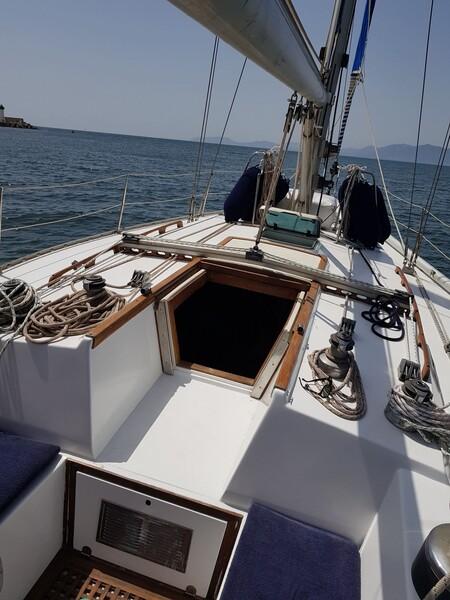 1#6071 Barca a vela Barberis in vendita - foto 8