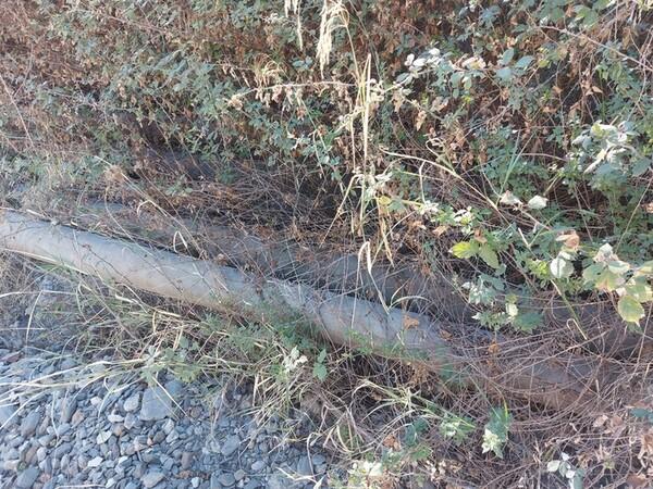 3#6134 Pali in cemento in vendita - foto 17