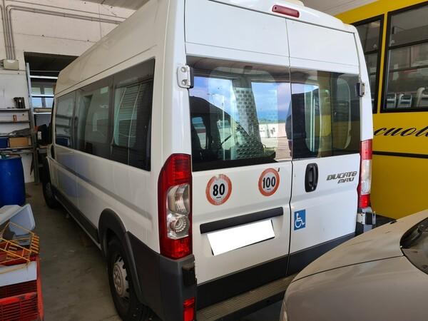 1#6173 Autobus 14 posti Fiat Ducato in vendita - foto 3