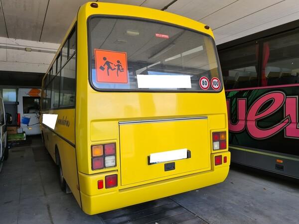 2#6173 Autobus 49 posti  Iveco Cacciamali tema 294 in vendita - foto 4