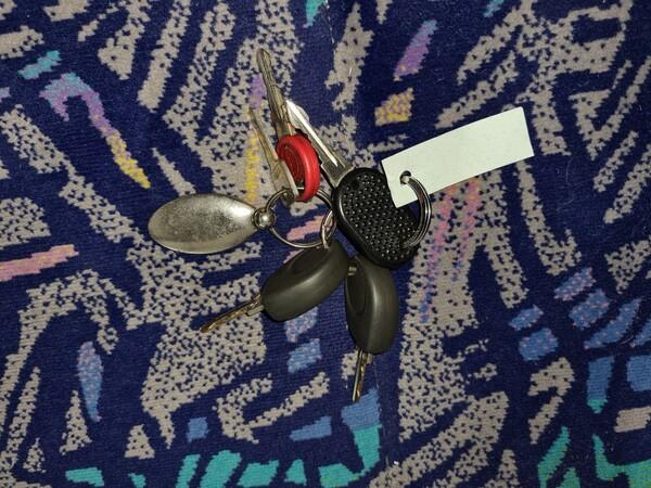 8#6173 Autobus 17 posti Iveco A50C/16 in vendita - foto 13