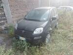 Autovettura Fiat Panda - Lotto 2 (Asta 6179)
