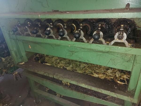 1#6208 Impianto di lavorazione e calibratura agrumi in vendita - foto 12