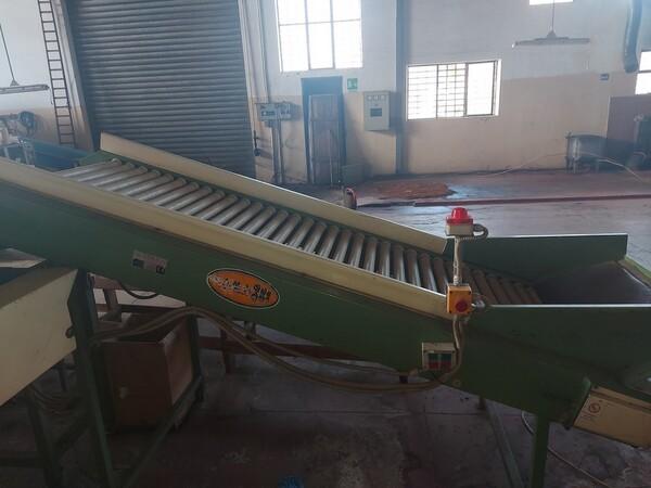 1#6208 Impianto di lavorazione e calibratura agrumi in vendita - foto 37