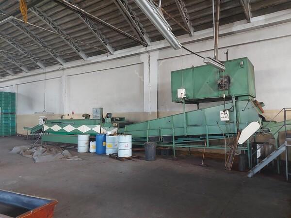 1#6208 Impianto di lavorazione e calibratura agrumi in vendita - foto 47