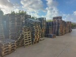 Stock of pallets - Lot 5 (Auction 6356)