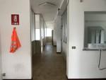 Immagine 10 - Complesso industriale demolito con palazzina uffici - Lotto 1 (Asta 9913)