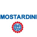Aste Fallimentari Mostardini