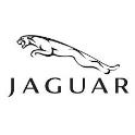 Aste Fallimentari Jaguar