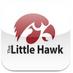 The Little Hawk