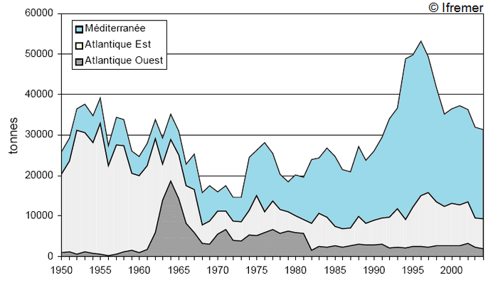Graph Of Number Fished Per Area Bluefin
