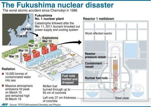 Fukushima nuclear power plant disaster by awesomejo05 infogram on the day of fukushima accident reactor 34 and 5 were empty of fuel rods reactor 3 blows and burns reactor 4 catches on fire and damaged ccuart Gallery