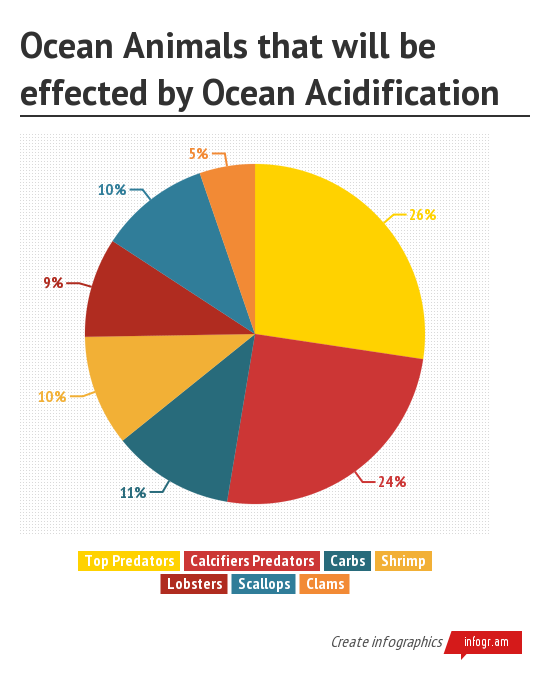Ocean acidification by dananans infogram i made this graph to show the percentages of animals in the ocean who will be the most effected by ocean acidification one of the most impacted ones are ccuart Choice Image