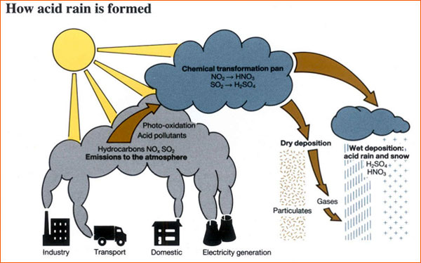 acid rain causes and effects