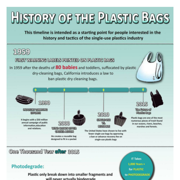 a history of plastic A comprehensive history of plastic surgery dating from ancient egypt, india, through the modern day.