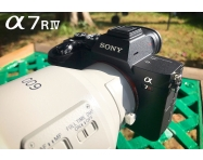 NOW IN STOCK: Sony a7R IV Full Frame Mirrorless Camera – Sample Images