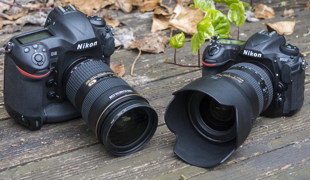 Nikon D5 Vs Nikon D500