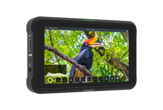 Atomos Shinobi monitor hire