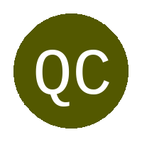 Qwaqwa Celta Vego FC logo