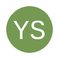 Young Stars FC logo