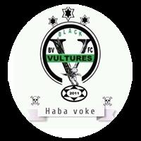 Black Vultures FC logo