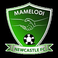 Mamelodi Newcastle FC logo