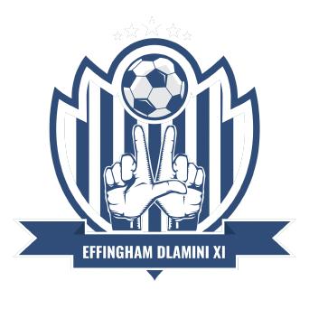 Effingham Dlamini logo