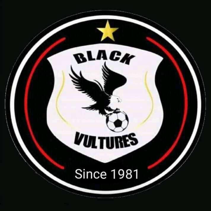 Black Vultures logo