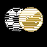 Hollywoodbets Super League Sponsor logo